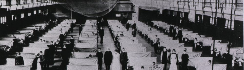Flu! The 1918 Spanish Influenza in American and World History
